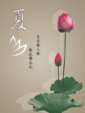杨  蓉:唤醒心里的莲花(五篇))